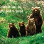 May Kicks Off the Summer Season in Wyoming!